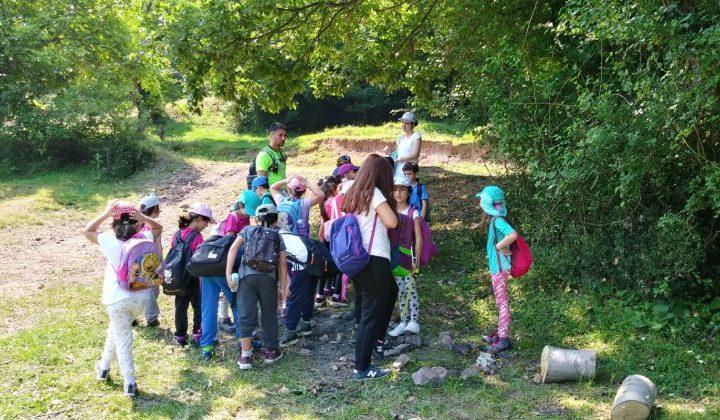 Ekoloji Dersi: Doğayla Uyumlu Yaşamayı Öğrenen Çocuklar